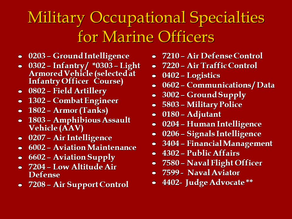 """an introduction to the united states marine corps and management Introduction """"leadership is intangible, hard to measure, and difficult to describe  by the time he retired from the marine corps in 1951 he had."""