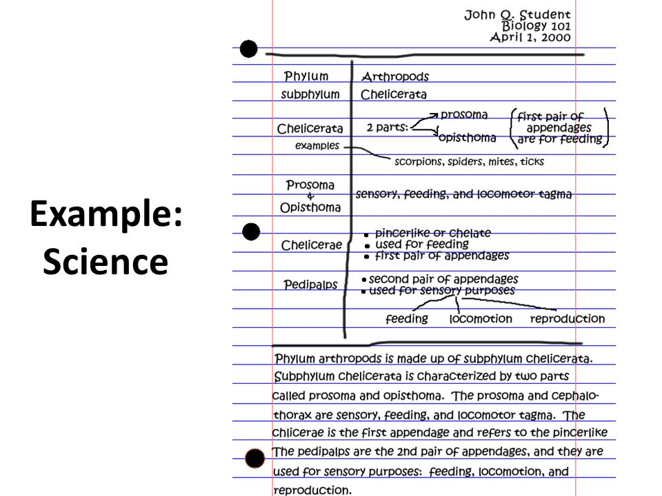 Example: Science