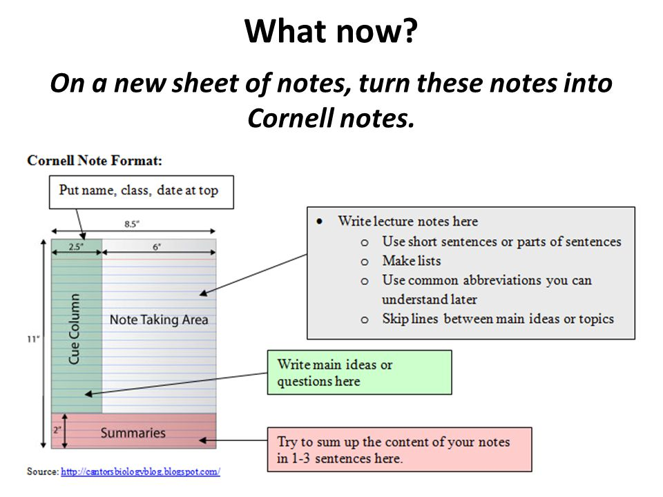 On a new sheet of notes, turn these notes into Cornell notes.