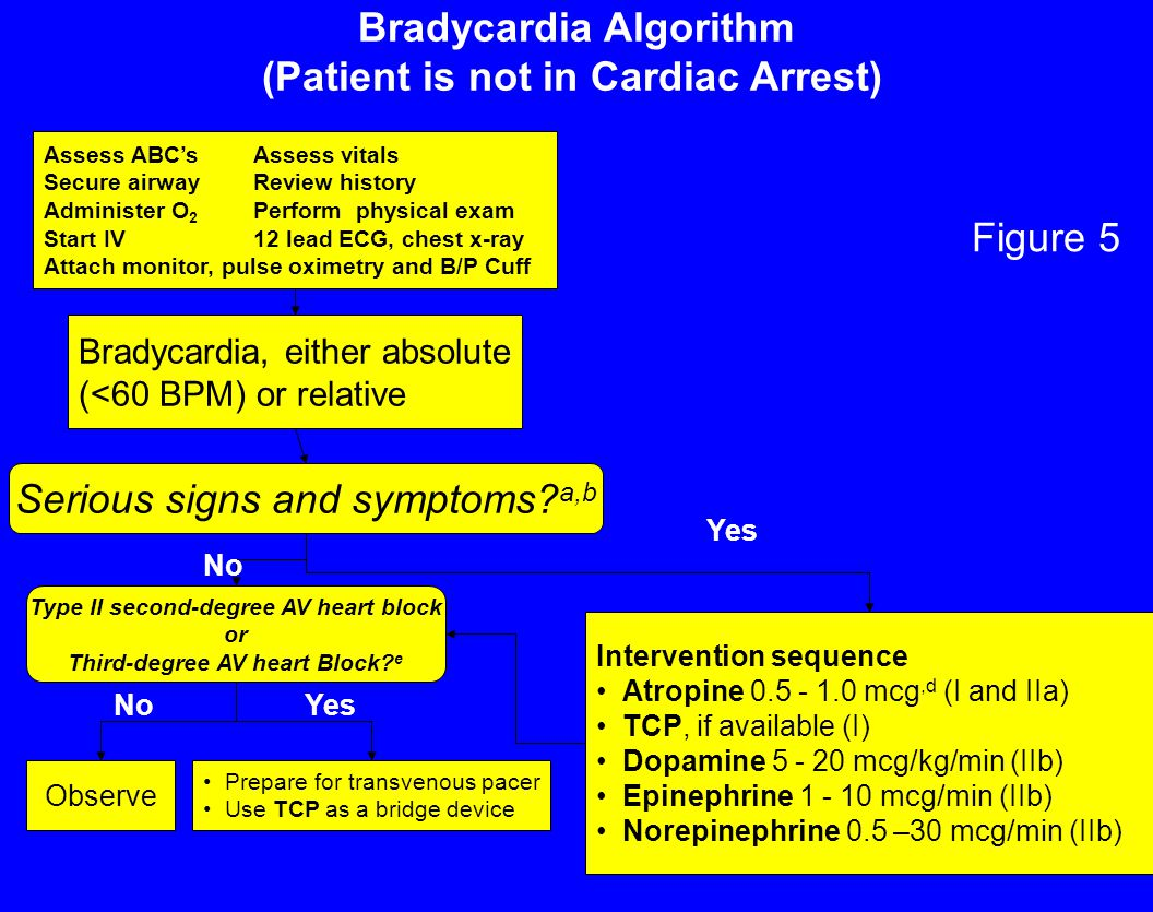 Bradycardia Algorithm (Patient is not in Cardiac Arrest)
