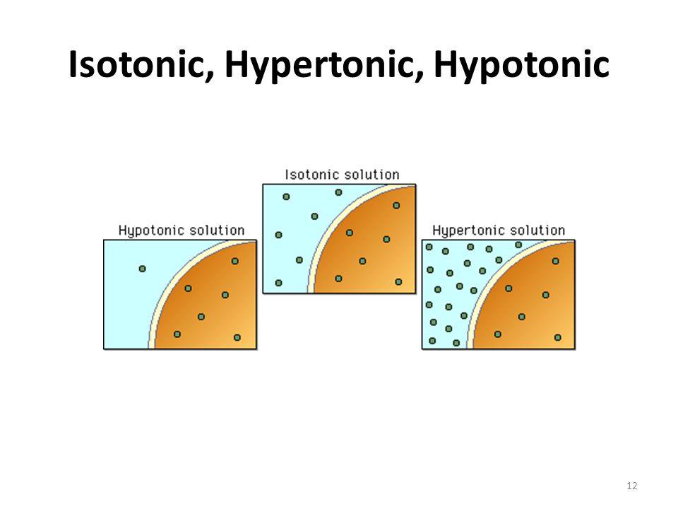 hypotonic related keywords hypotonic long tail keywords keywordsking. Black Bedroom Furniture Sets. Home Design Ideas