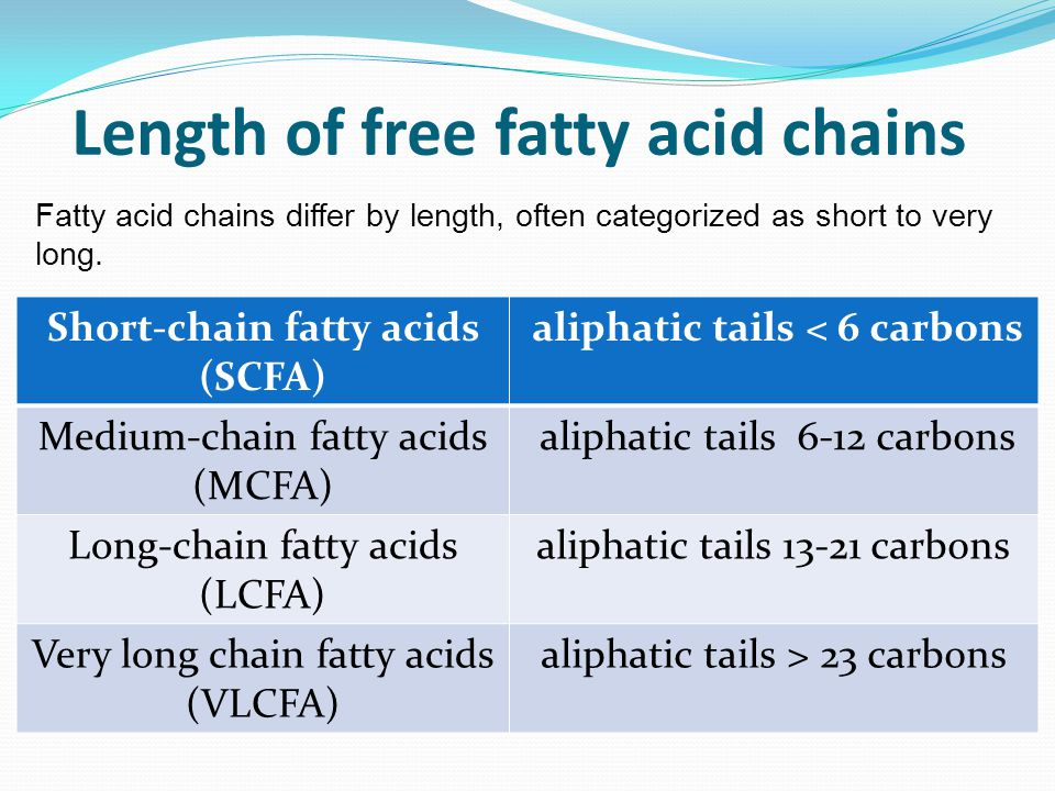 Length of free fatty acid chains