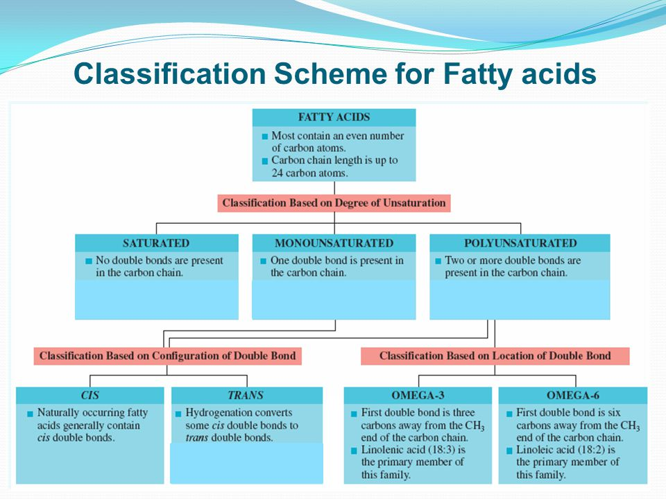 Classification Scheme for Fatty acids