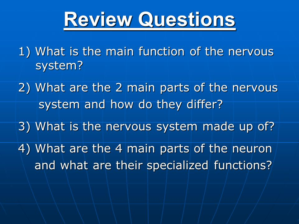 the main functions of the nervous system List the general functions of the nervous system  chapter 7: the nervous system 10 iii importance of sympathetic activation c parasympathetic division.