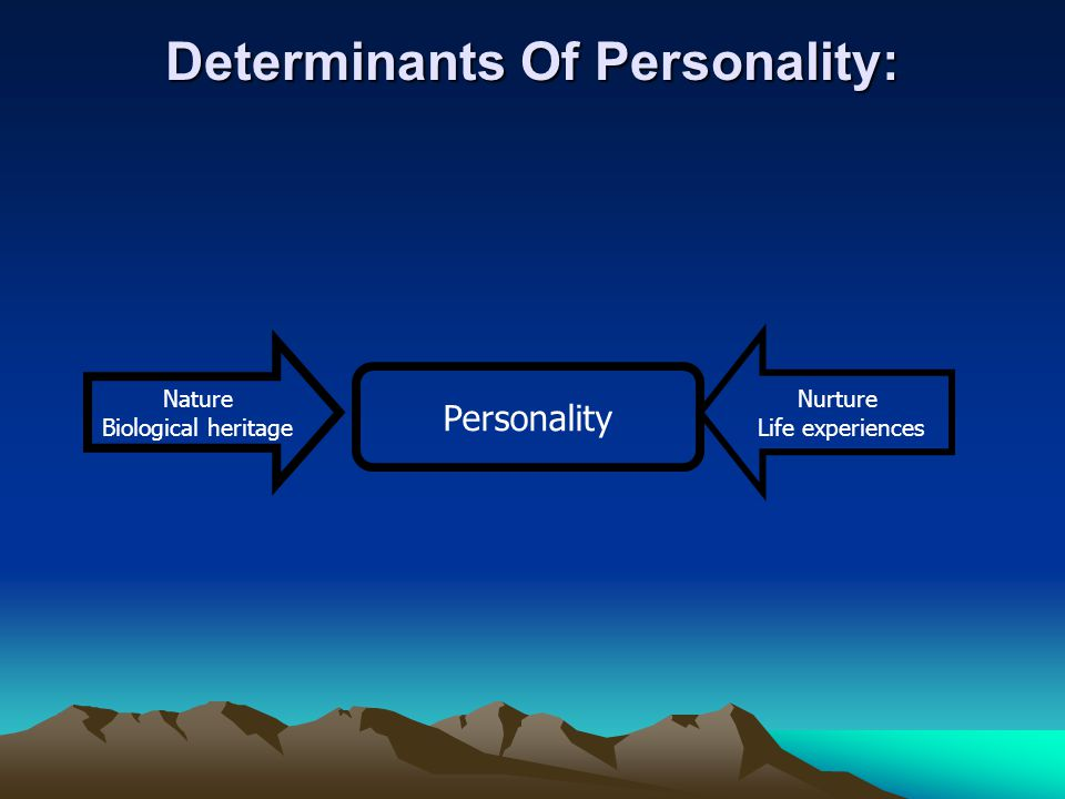 personal determinants Personal characteristics, cognitive abilities and behaviors which influence the  innovation process learn more in: managers and the innovation process.