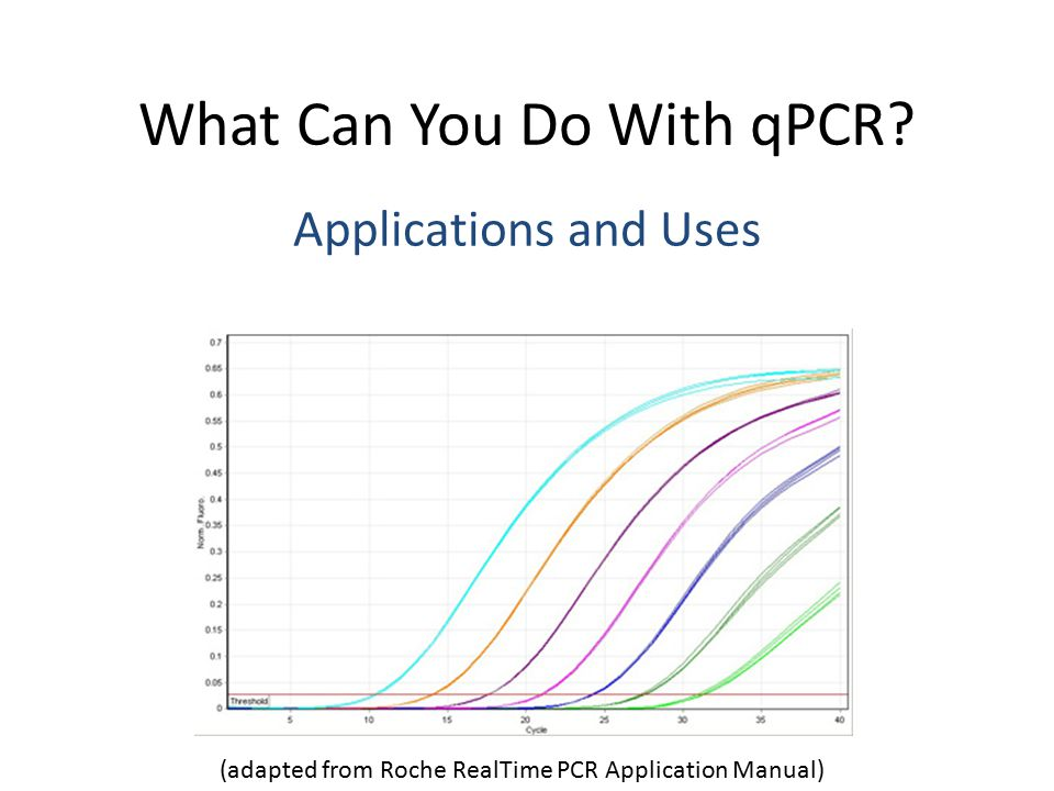 Lightcycler real-time pcr systems application manual.