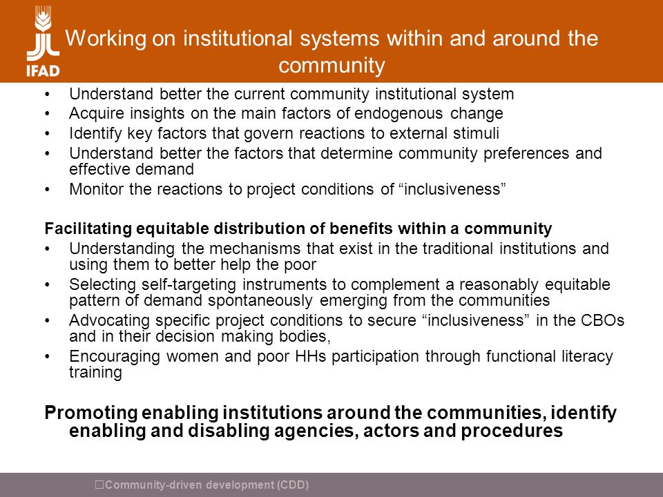 Working on institutional systems within and around the community