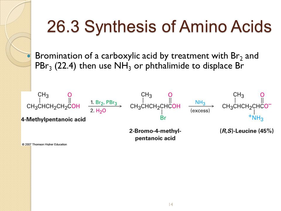 synthesise amino acids They then travel through your bloodstream to your cells, ready to be linked together into new proteins as necessary food proteins contain 20 different amino acids that can mix and match to create the variety of proteins in your body you have the ability to synthesize certain amino acids if your diet lacks them others,.