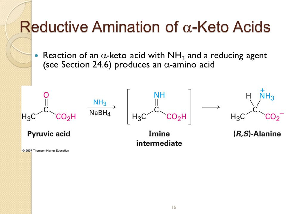 efficiencies of reductive amination reactions on Pled regeneration reactions provide the driving force recently, amine dehydrogenases, which reductively aminate ketones to amines, have been developed via protein engineering both amino acid and amine dehydro-  4 biocatalysis 24 transamination and reductive amination.