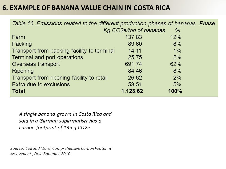 6. EXAMPLE OF BANANA VALUE CHAIN IN COSTA RICA