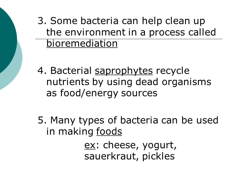 3. Some bacteria can help clean up the environment in a process called bioremediation