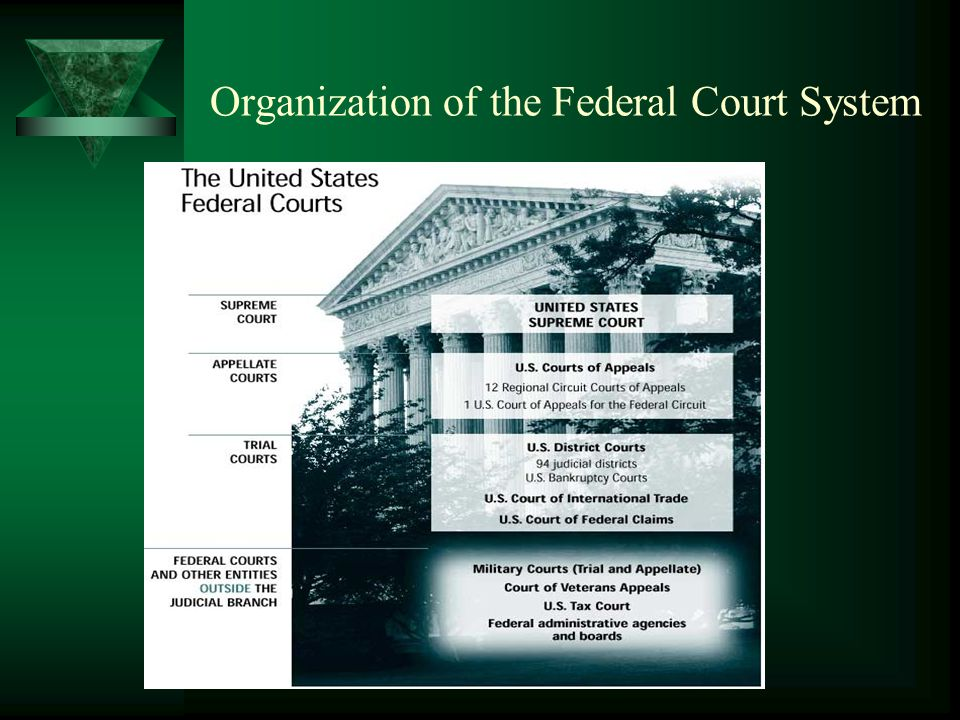 Organization of the Federal Court System