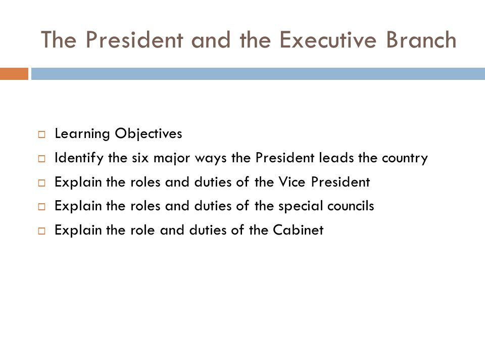 The President and the Executive Branch - ppt video online download