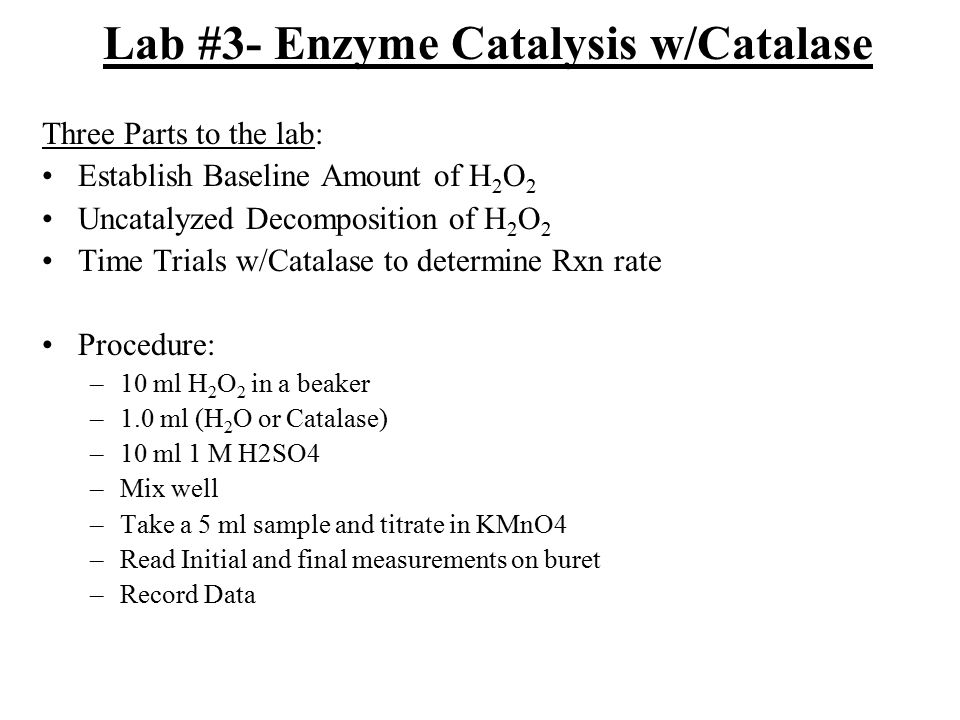 Lab #3- Enzyme Catalysis w/Catalase