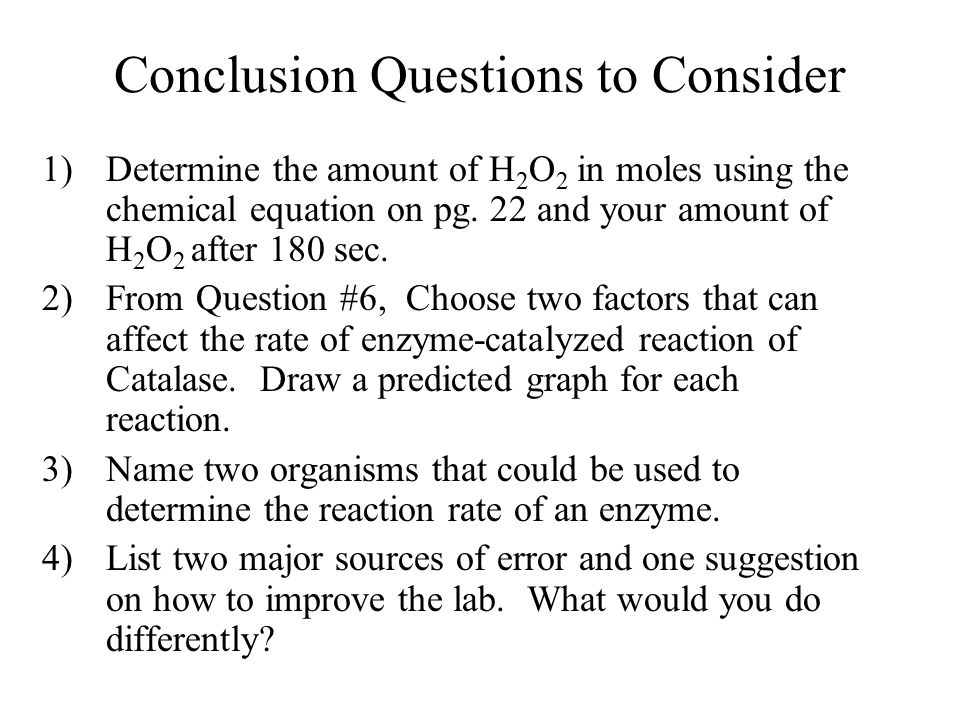 Conclusion Questions to Consider