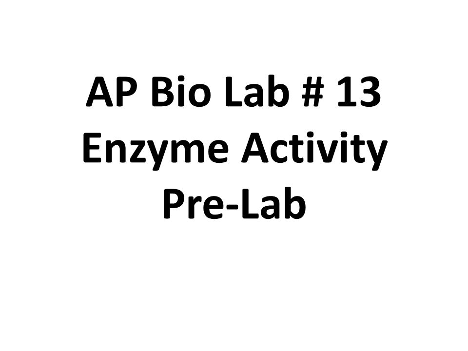 observe the effects of ph on catalase activity Free essay: effects of temperature, ph, enzyme concentration, and substrate concentration on enzymatic activity introduction enzymes, proteins that act as.
