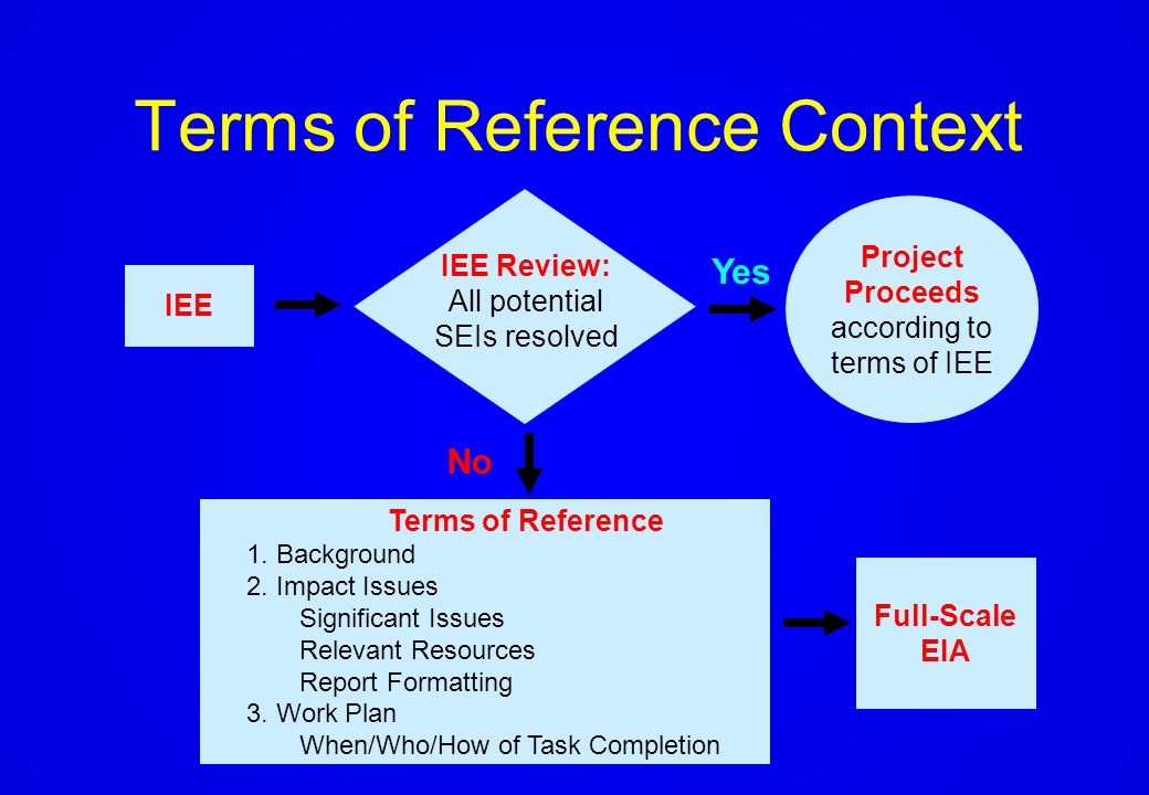 What is a Terms of Reference?