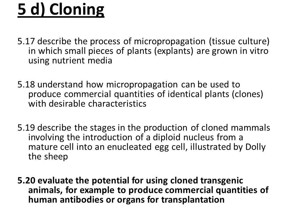 5 d) Cloning
