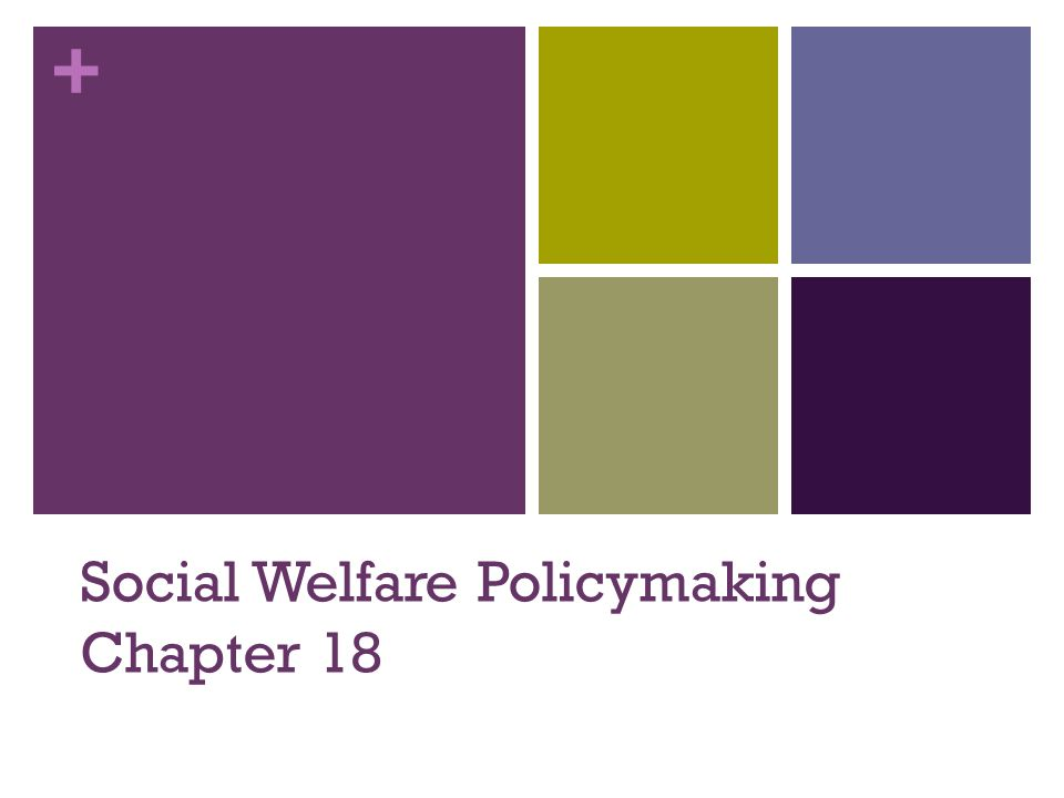 Social Welfare Policymaking Chapter 18