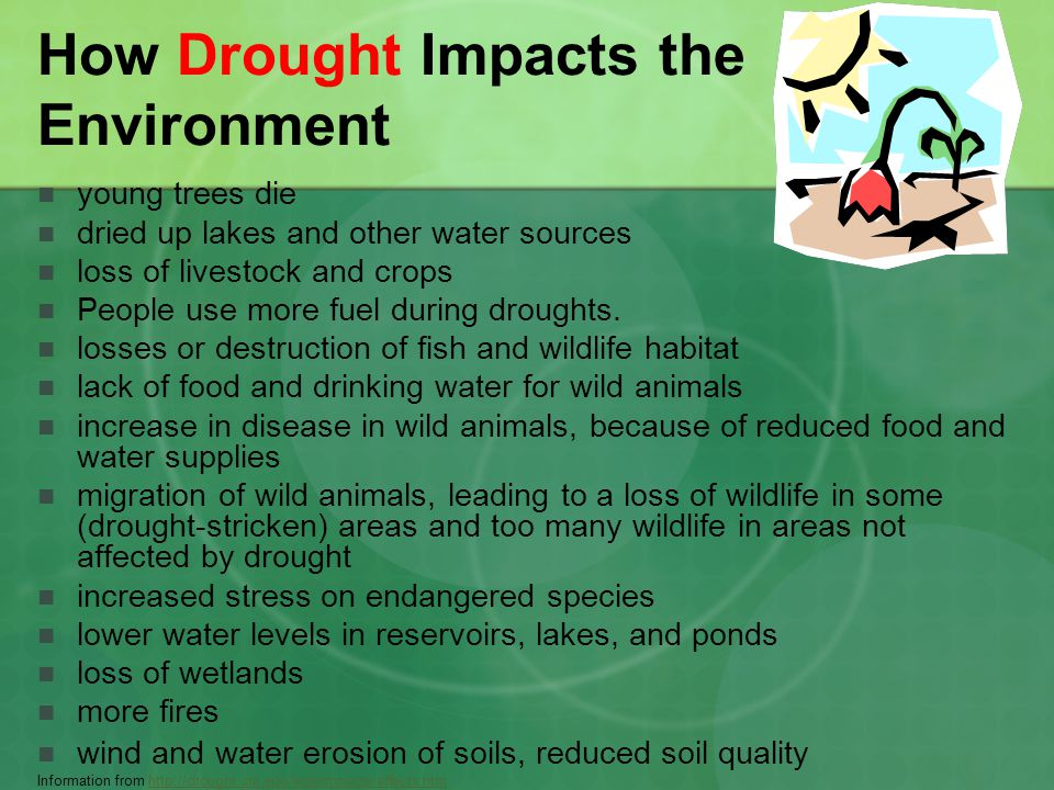 The effects of drought on aquatic
