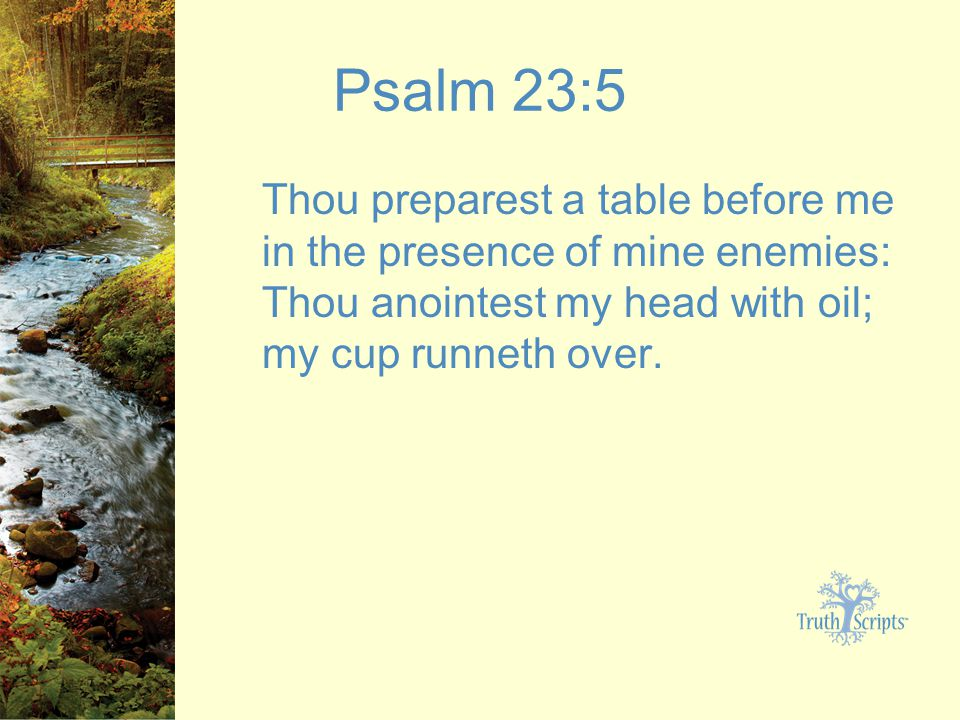 6 Psalm 23 5 Thou Preparest A Table Before Me In The Presence Of Mine Enemies Anointest My Head With Oil Cup Runneth Over