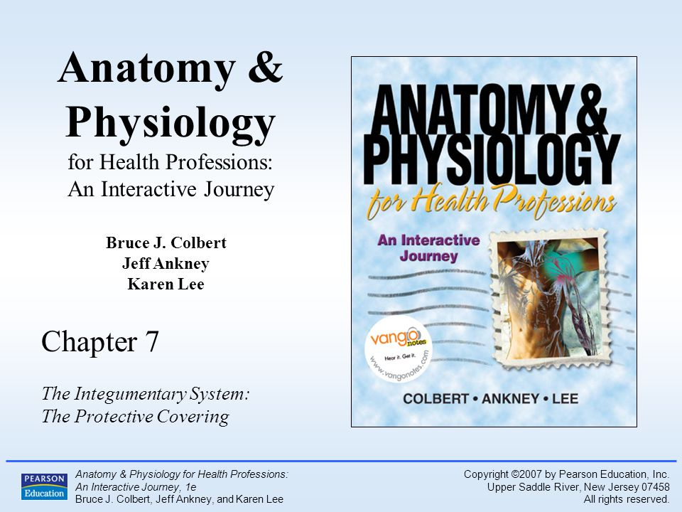 Outstanding Anatomy And Physiology For Health Professions Gift ...