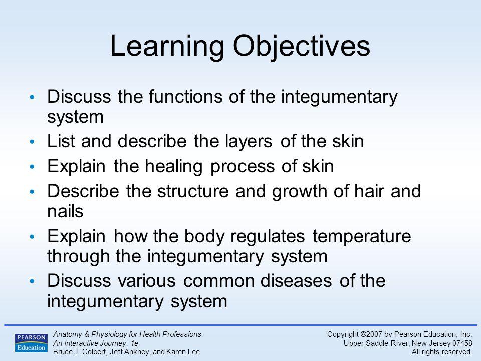 Lujoso Anatomy And Physiology Of Healthy Skin Cresta - Anatomía de ...