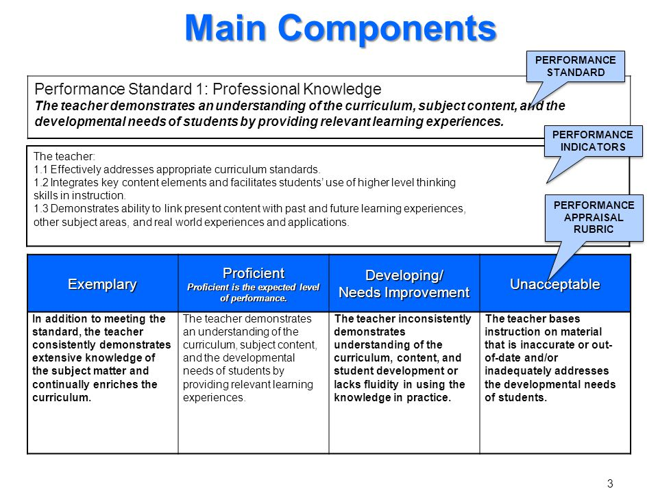 Main Components Performance Standard 1: Professional Knowledge
