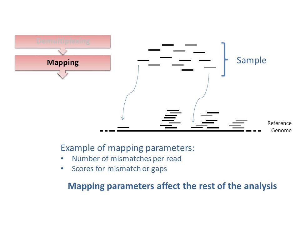 Mapping parameters affect the rest of the analysis