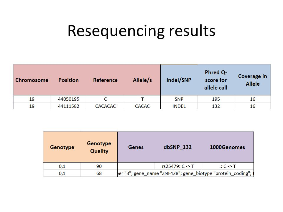 Resequencing results