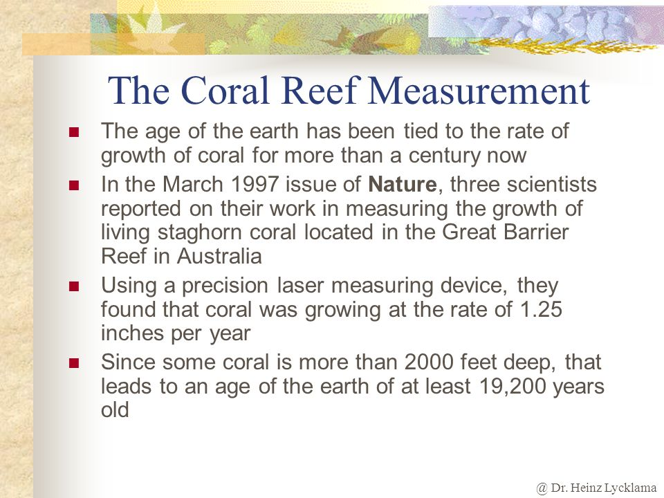 The Coral Reef Measurement