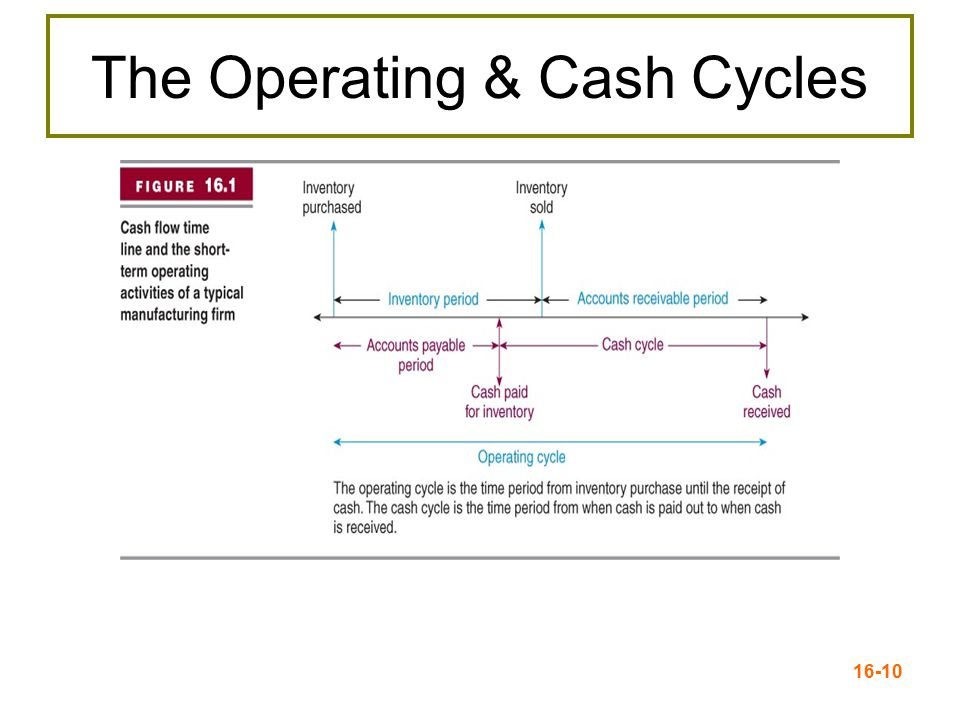 The Operating & Cash Cycles