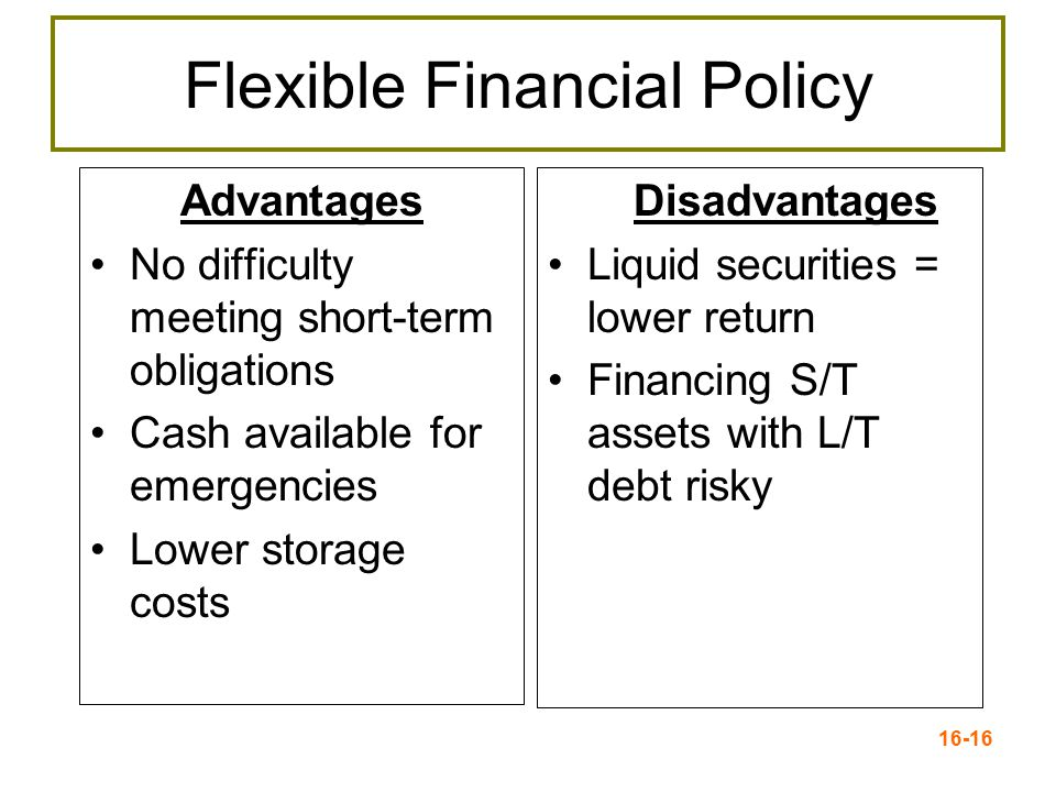 Flexible Financial Policy