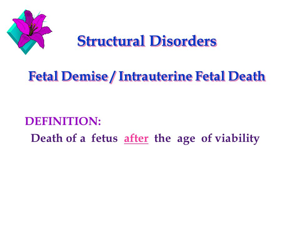 case study about itrauterine fetal demise A case-control study to have intrauterine growth restriction: doppler us study of fetal of fetal growth restriction by fetal.