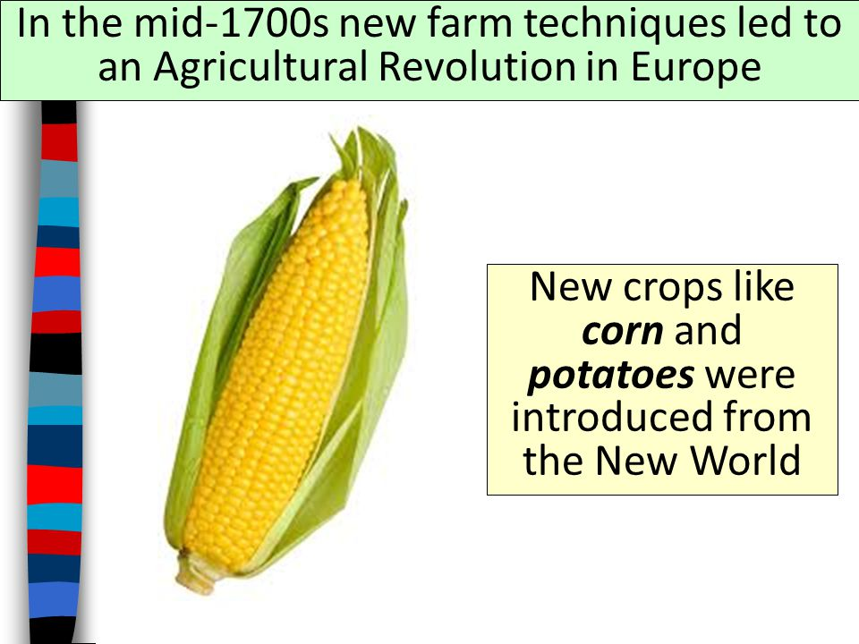 New crops like corn and potatoes were introduced from the New World