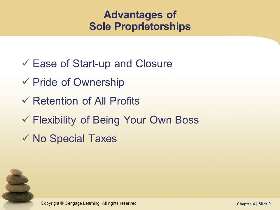 being your own boss no special taxes advantages of sole proprietorships - Being Your Own Boss Advantages And Disadvantages