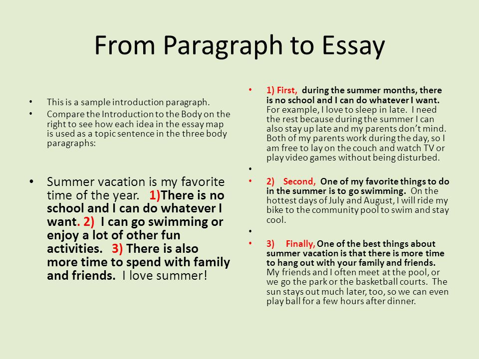Essay my vacation