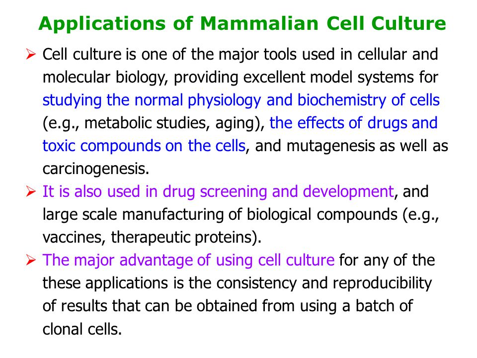 Applications of Mammalian Cell Culture