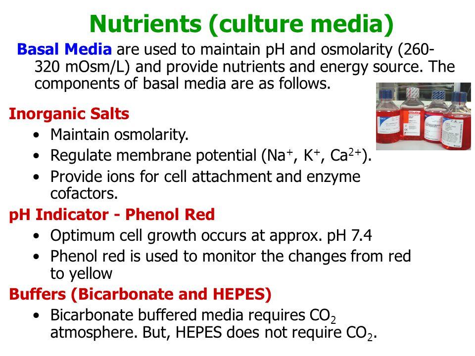 Nutrients (culture media)