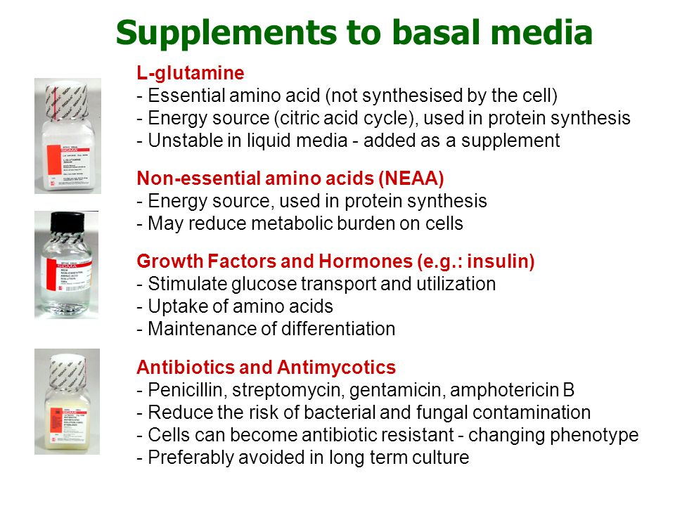 Supplements to basal media