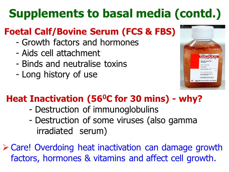 Supplements to basal media (contd.)