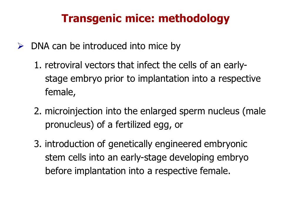 Transgenic mice: methodology