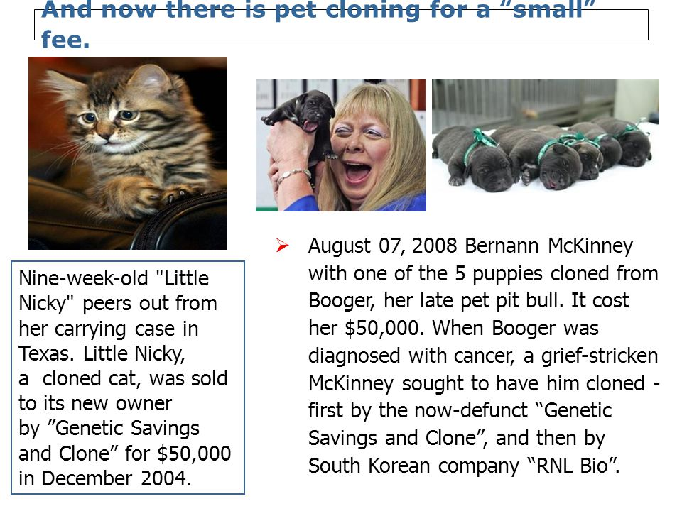 And now there is pet cloning for a small fee.