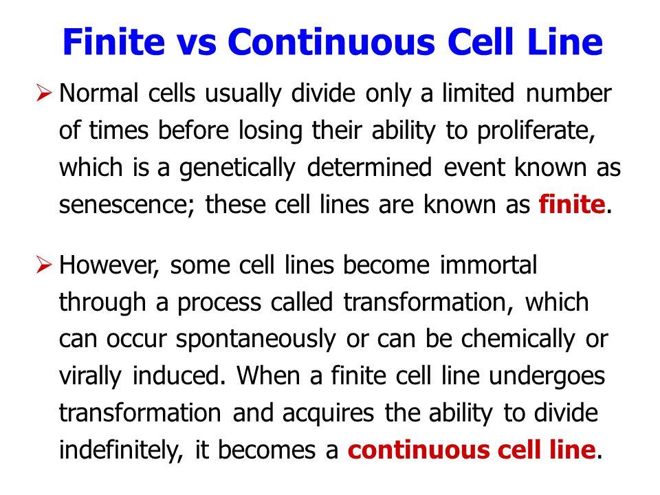 Finite vs Continuous Cell Line