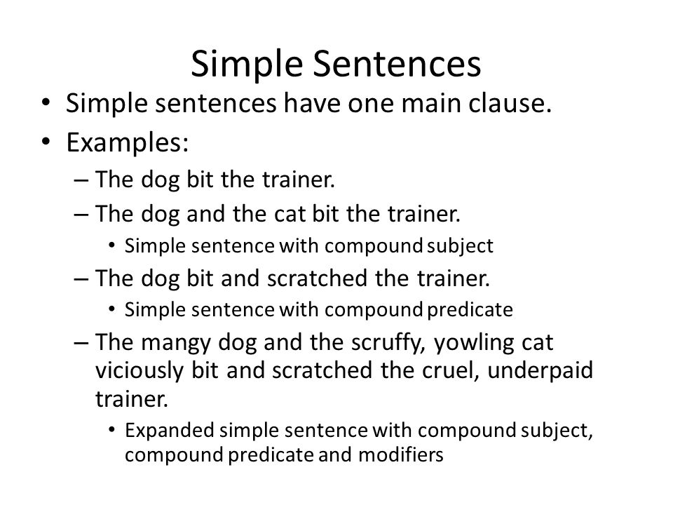 Simple Sentences Simple sentences have one main clause. Examples: