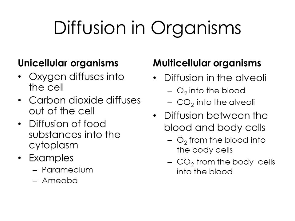 diffusion and osmosis in plant and animal cells