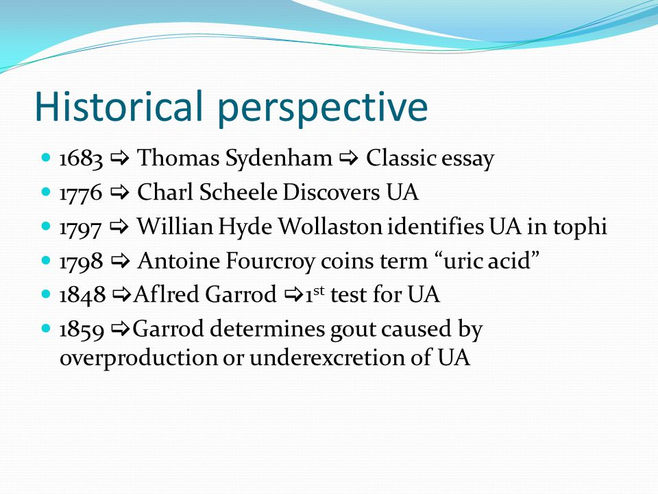 Historical perspective essay