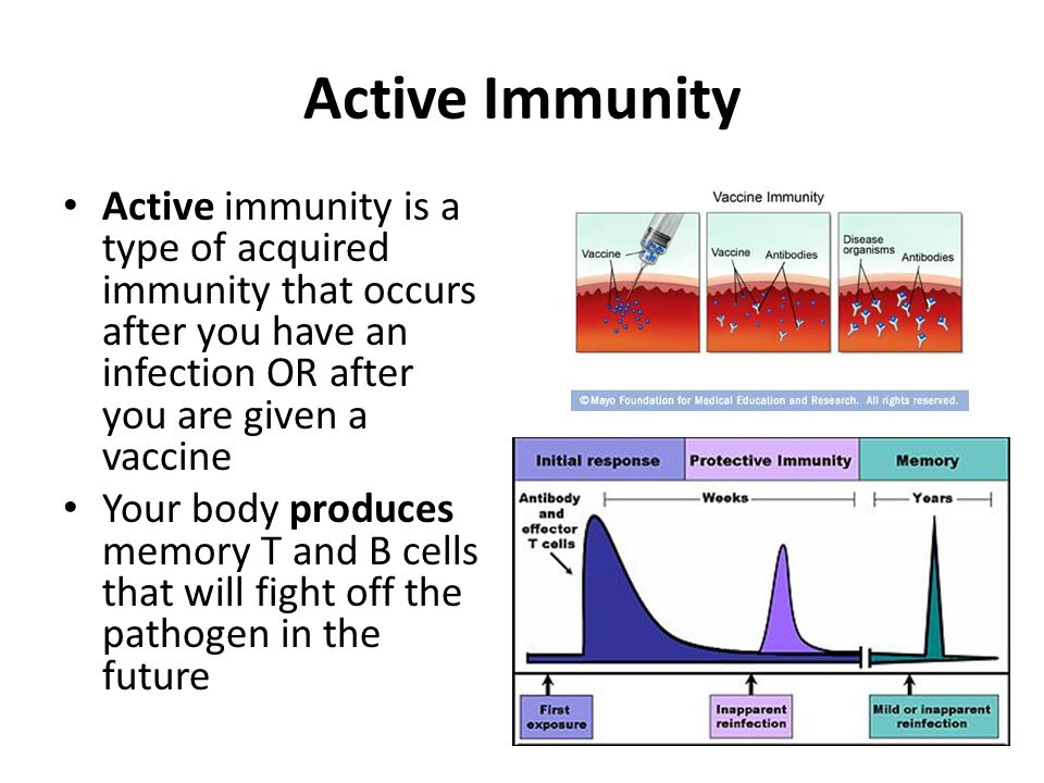 Active Immunity Active immunity is a type of acquired immunity that occurs after you have an infection OR after you are given a vaccine.