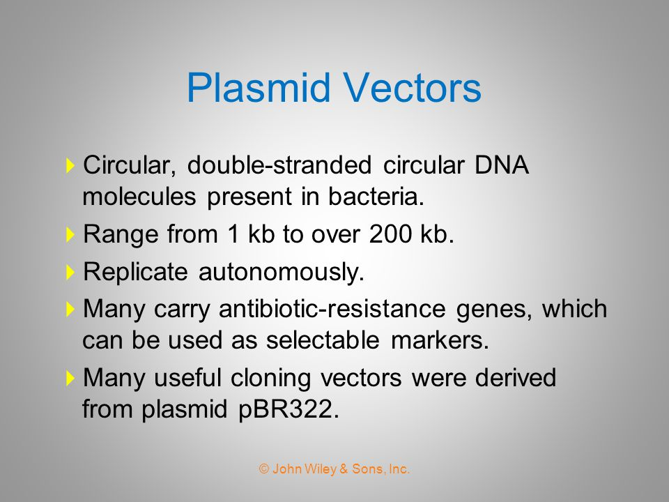 Plasmid Vectors Circular, double-stranded circular DNA molecules present in bacteria. Range from 1 kb to over 200 kb.