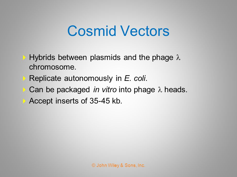 Cosmid Vectors Hybrids between plasmids and the phage  chromosome.